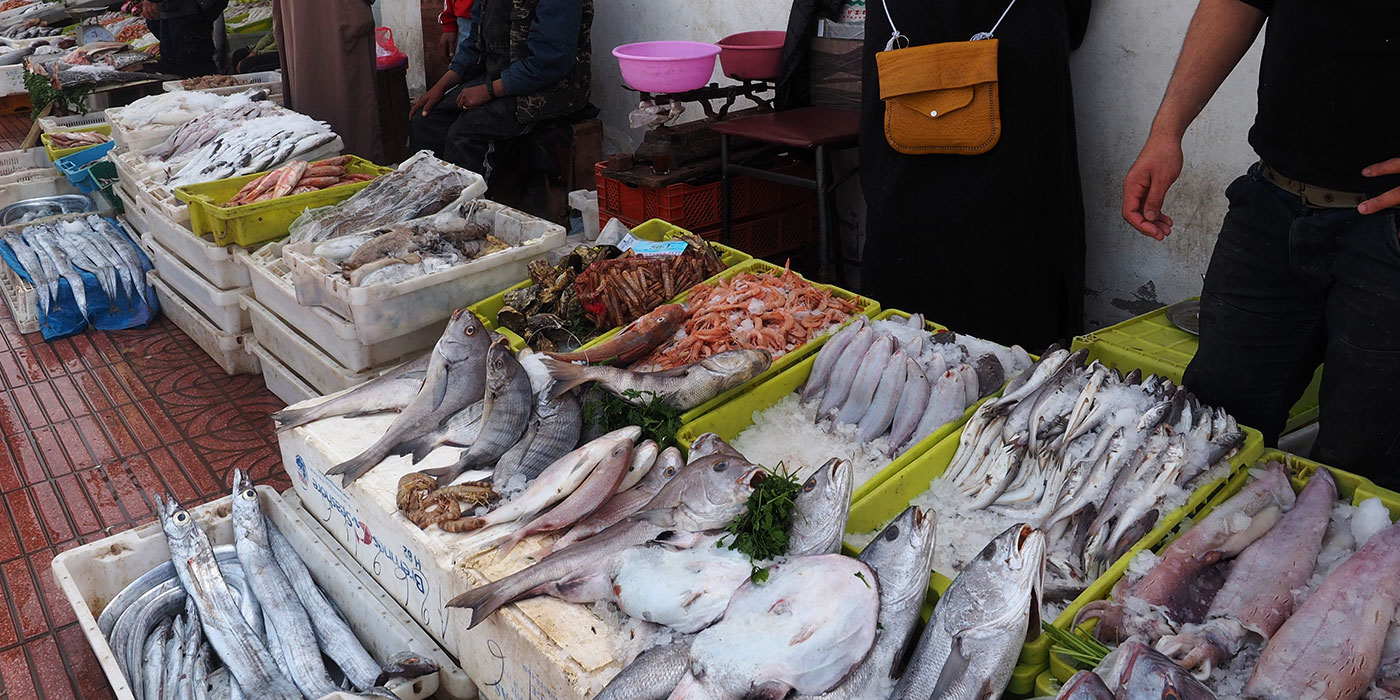 Marrakech express travel agadir for Imperial fish market